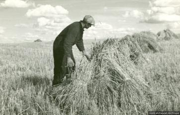 Agriculture – Stooks and Stooking, Gravelbourg District. Photograph, PAS R-A15121-1