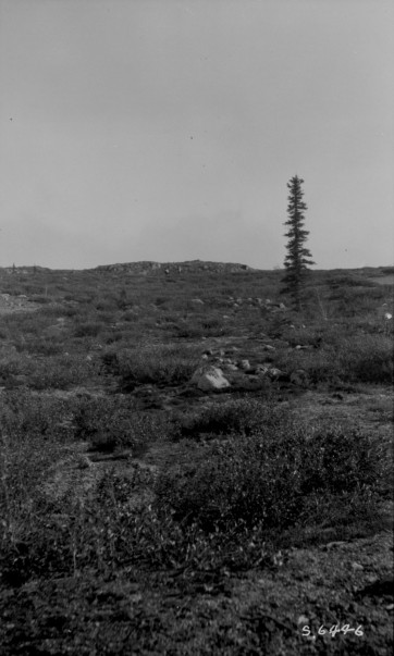 Rough border of Laurentian plateau, Pikes Portage east of Great Slave Lake, N.W.T. Dura Lake portage, 1923. Photograph. LAC PA-019184