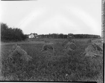 Wm. Notman & Son, J. Tait's Farm, North Battleford, SK, 1920. Silver salts on film - Gelatin silver process, (20 x 25 cm). McCord Museum VIEW-8544.