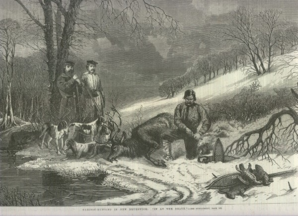 Caribou Hunting in NB_anonymous_1863 PANB